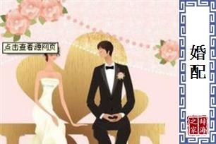 婚配的意思、造句、近义词