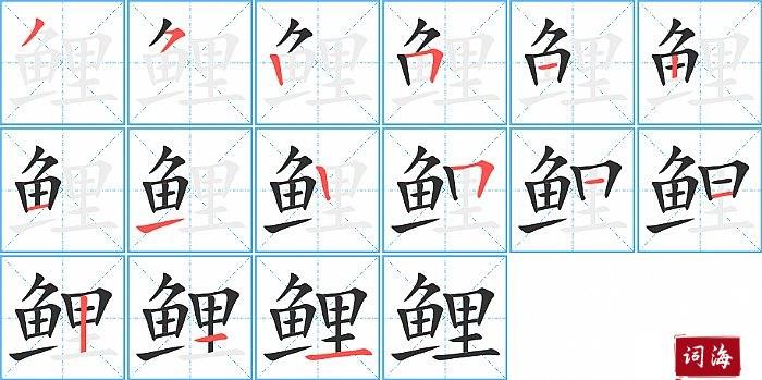鲤字怎么写图解