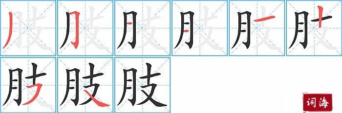 肢字怎么写图解